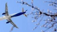 Минтранс оценил потери авиакомпаний от заперта полетов вГрузию