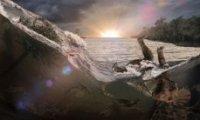 Охотник зазолотом обнаружил метеорит возрастом 5 миллиардов лет