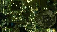 Новая Зеландия разрешила платить зарплату вкриптовалюте
