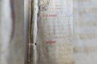 Обнаружена средневековая версия «50 оттенков серого»