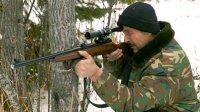Охотникам хотят дать право регулировать численность животных