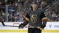 Российский хоккеист дисквалифицирован на20 матчей НХЛ задопинг