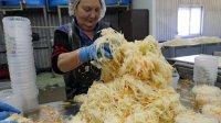 Нижегородскую квашеную капусту планируют поставлять вСША