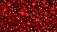 Российские ученые признали чай, арахис иклюкву ГМО-растениями
