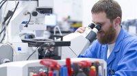 Ученые признали орехи, чай иклюкву природными ГМО-растениями