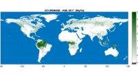 Создана карта распределения биомассы наЗемле