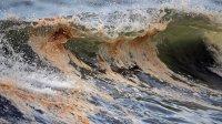 Ученые недооценили «мертвые зоны» вморях