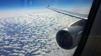 Стюардессы лучших авиакомпаний вмире назвали любимые самолеты