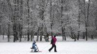 Синоптик предсказал зимний февраль вевропейской России