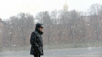 Эколог рассказал опоследствиях бесснежной зимы