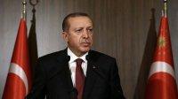 Эрдоган заявил, чтоТурция непризнает присоединение Крыма