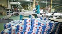 ВРоссии пять сахарных заводов закрылись из-заубытков