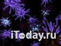Коронавирус: Главное на 2 февраля