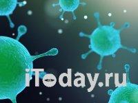 Количество инфицированных коронавирусом превысило 30000, умерших от болезни - более 900