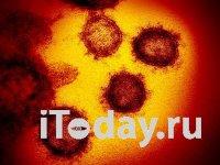 Коронавирус: В Китае 5090 новых случаев, 121 смерть за сутки