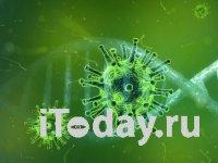 Коронавирус: Инфекция быстро распространяется в Южной Корее, Италии и Иране