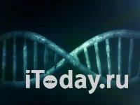 Каждой стране по коронавирусу: подтвердили два штамма