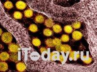 Исследование: Коронавирус может распространяться быстрее, чем считалось