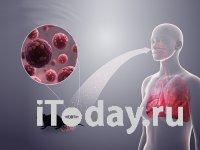 В СМИ кричат о хантавирусе, но это не новая инфекция