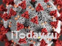 Коронавирусное заболевание (COVID-19): памятка для пациентов