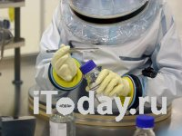 Новый коронавирус мог жить рядом с человеком десятилетия