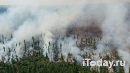 В МЧС оценили ситуацию с природными пожарами - 21.09.2020