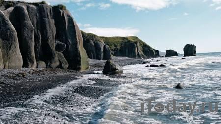 На Камчатке тысячи морских животных выбросились на берег - 02.10.2020