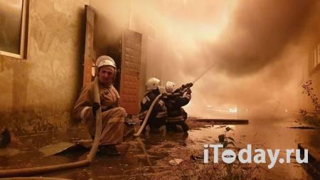 Пожарные спасли котенка на загоревшейся АЗС в Чечне - 24.10.2020