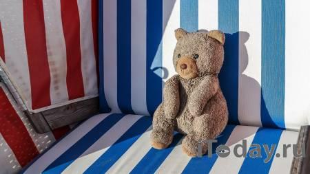 """""""В 31 не заработал"""": в Сети высмеяли мужчину за кражу плюшевого медведя - Радио Sputnik, 26.10.2020"""