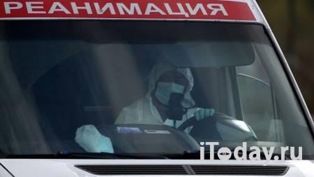 В Челябинске дерево упало на маленькую девочку - Радио Sputnik, 30.10.2020