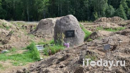 В Ленинградской области нашли останки погибших в войну мирных жителей - 30.10.2020
