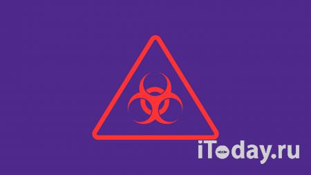 В Кремле назвали ситуацию с коронавирусом в России контролируемой - 24.11.2020