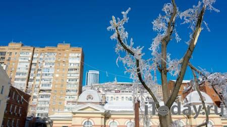 Власти назвали сроки восстановления электричества на острове Русском - 25.11.2020