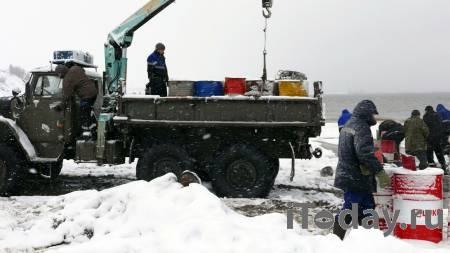 На предприятии в Красноярском крае, где разлилась нефть, нашли нарушения - 02.12.2020