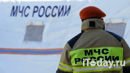 В Ленинградской области упал легкомоторный самолет - 08.01.2021