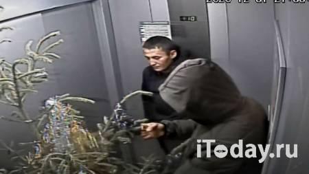 Москвич вопреки завещанию завладел наследством родственницы - Радио Sputnik, 13.01.2021