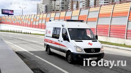 Семь велогонщиков были сбиты машиной во время тренировочного сбора - Спорт 16.01.2021
