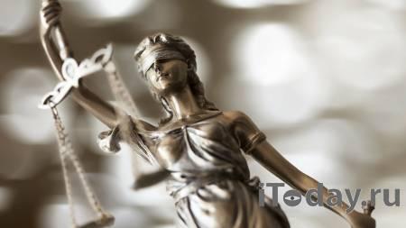Троим участникам незаконной акции в Пензе назначили обязательные работы - 26.01.2021