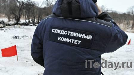 Женщина заблудилась по пути с работы и замерзла насмерть - Радио Sputnik, 26.02.2021