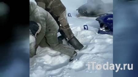 Браконьеры сняли на видео жестокое убийство беременной лосихи - 28.02.2021