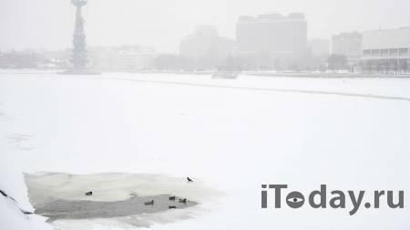Москвичка поплыла ночью на льдине и не смогла объяснить, как - Радио Sputnik, 08.04.2021