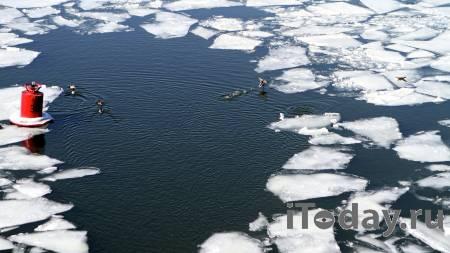 В Омске спасли упавшую с моста женщину - 18.04.2021