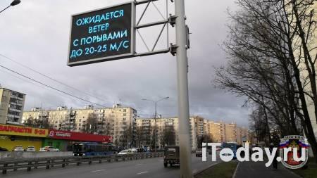 Власти рассказали о последствиях ураганного ветра в Москве - 06.05.2021