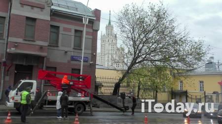 Власти Москвы рассказали о последствиях урагана в городе - 12.05.2021