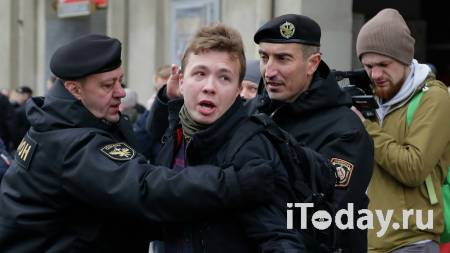 В Госдуме прокомментировали задержание Протасевича в Минске - 24.05.2021