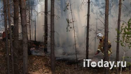 Рослесхоз назвал регионы с аномально высоким риском лесных пожаров в июне - 31.05.2021