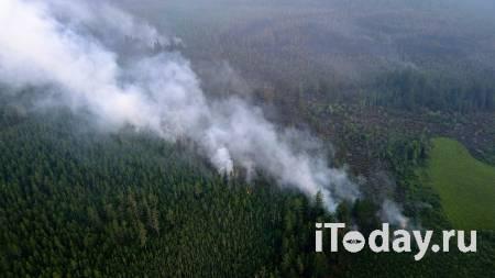 В МЧС оценили ситуацию с лесными пожарами на Дальнем Востоке - 27.07.2021