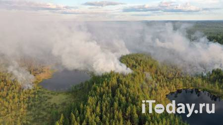 В Карелии отменили режим ЧС, введенный из-за пожаров - 30.07.2021