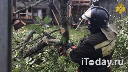 Климатолог назвал причину смерча в Тверской области - 03.08.2021