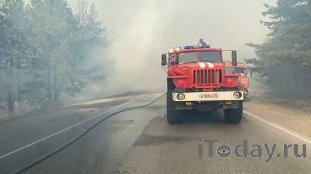 Природному пожару под Оренбургом присвоили третий ранг - 03.08.2021